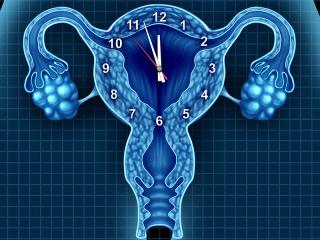 news10 320x240 - Συμβουλές για τη γονιμότητά σας